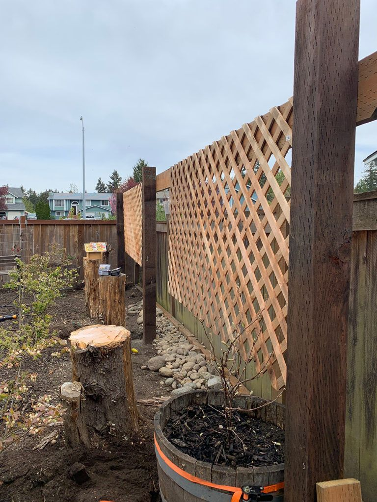 How We Made This Eye Catching Grape Trellis In Our Garden A Trellis Is A Great Way To Add Some Charm To Your O In 2020 Garden Trellis Diy Garden Trellis