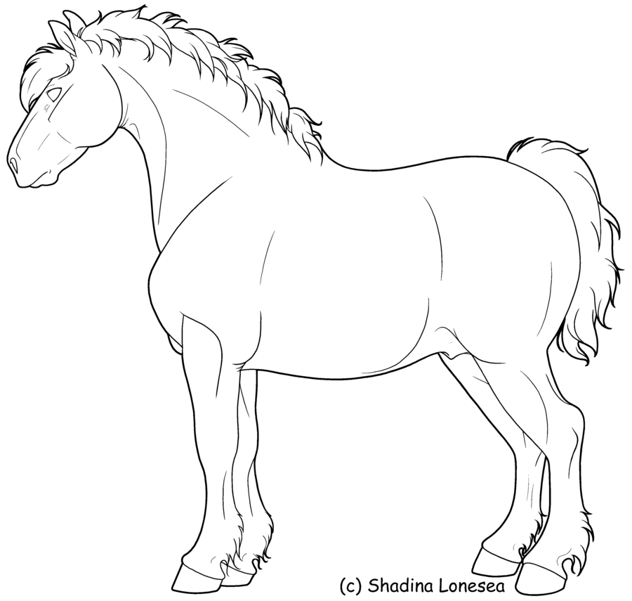 Rearing Draft Horse Horse Coloring Horse Coloring Pages Horse Rearing