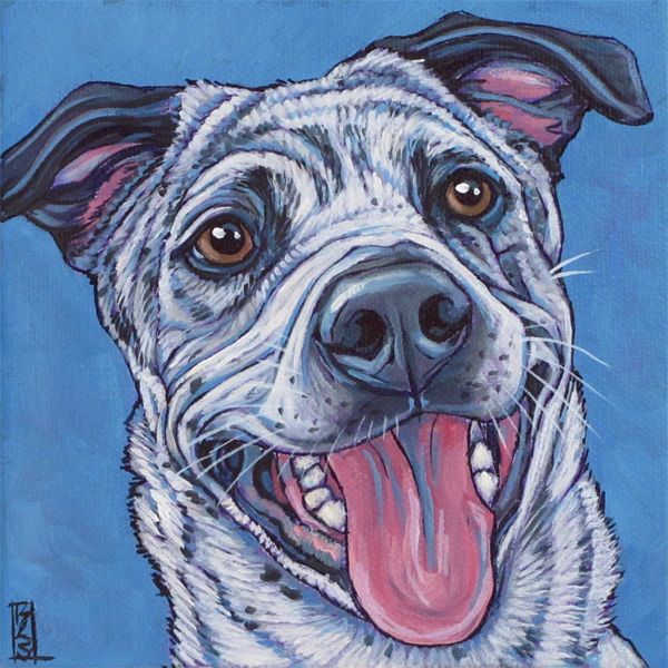 Australian Cattle Dog And Terrier Mixed Breed Dog Custom Pet Portrait Painting In Acrylic On 6 X 6 Canvas From Pet Portraits By Beth Pet Portraits Dog Pop Art