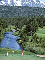 Lake Tahoe Golf Course George and Choo on Friday!