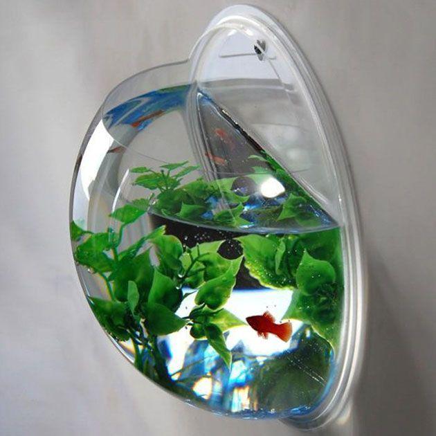 Wall Mounted Fish Bowl Aquarium Hiconsumption Fish Bowl Plant Decor Fish Tank