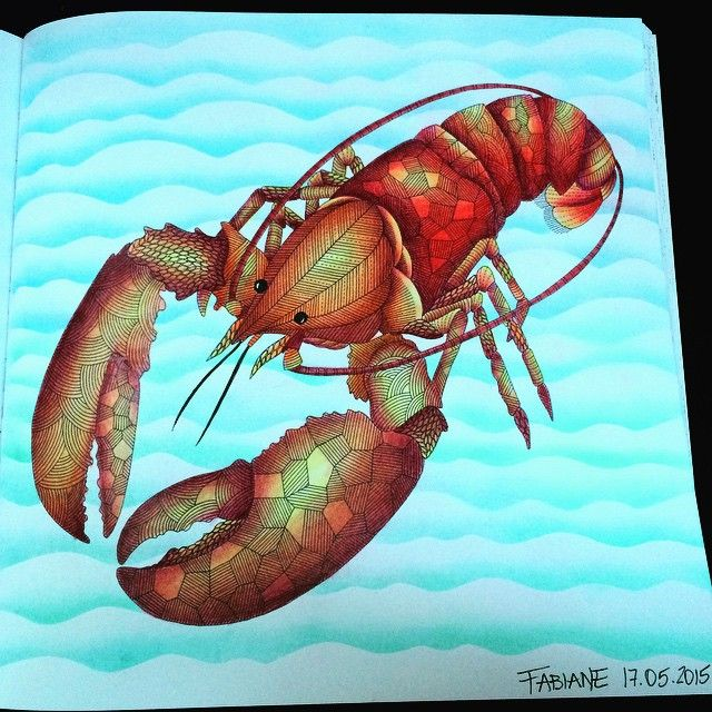 This Is My Last Painting By Millie Marotta Book Colouring Milliemarotta Lobster
