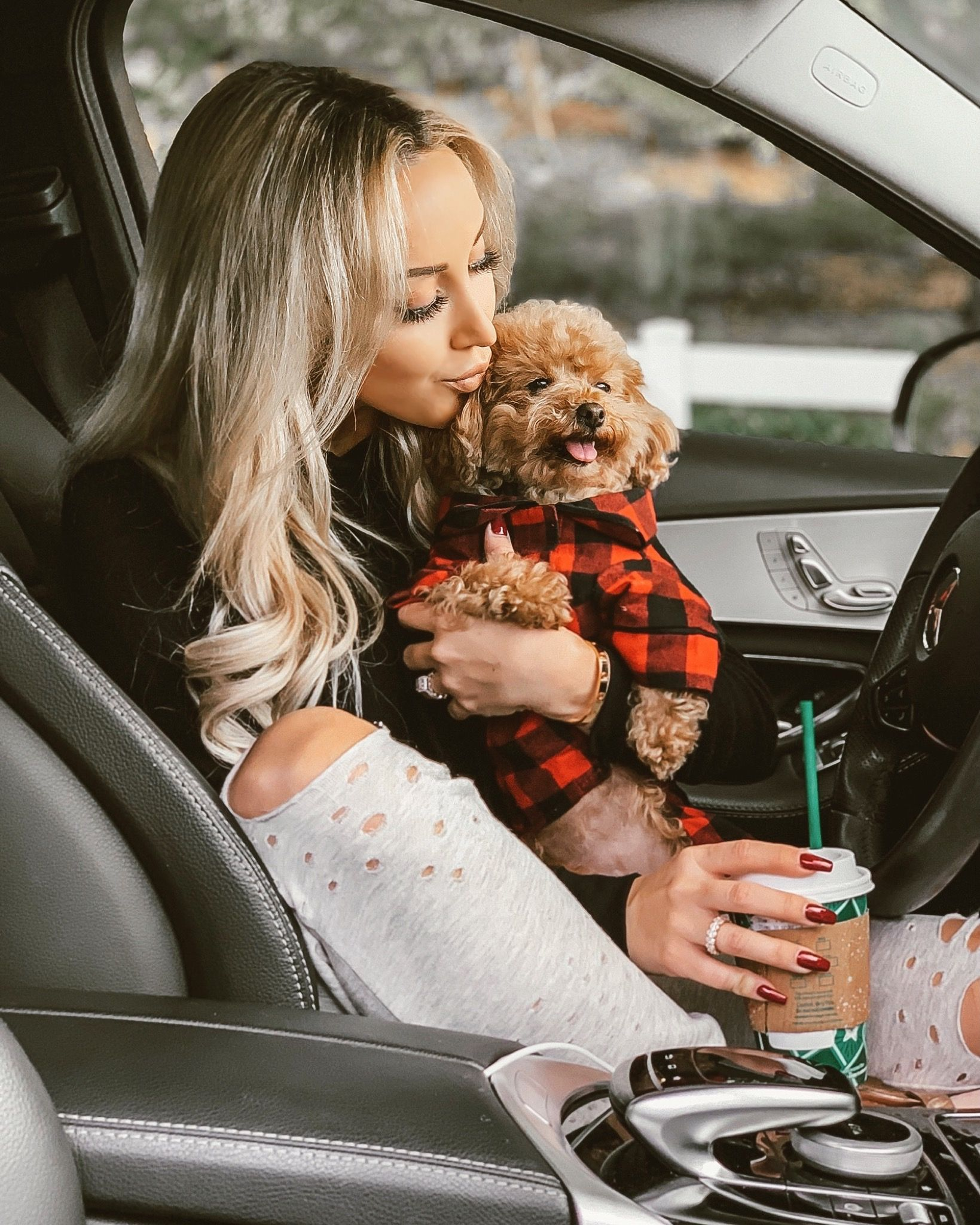 Christmas Diaries 2018 Dogs Small Poodle Small Dog Clothes