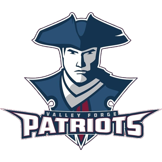Image result for Valley Forge Patriots