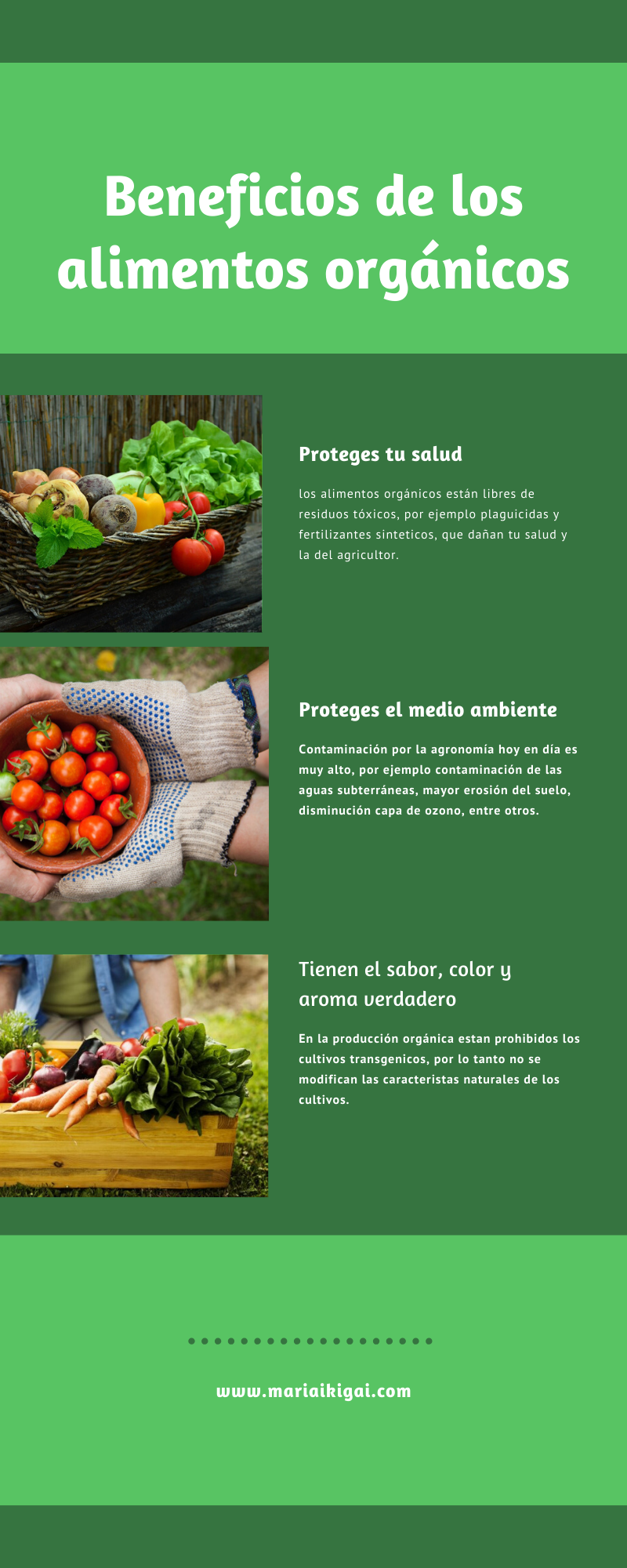 Beneficios De Consumir Alimentos Orgánicos Alimentos Organicos Huerto En Casa Como Hacer Un Huerto