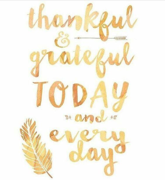 Thanksgiving Inspirational Quotes Thankful & Grateful And Every Day  What Are You Thankful For .