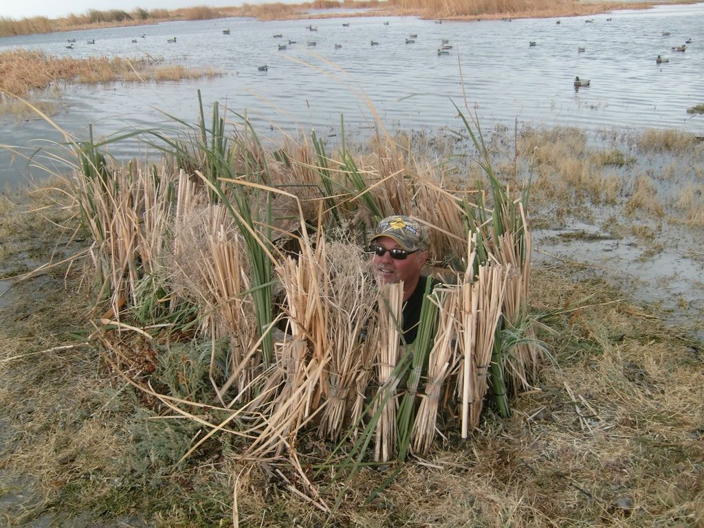 Barrel Duck Blinds Duck Hunting Blinds Duck Hunting