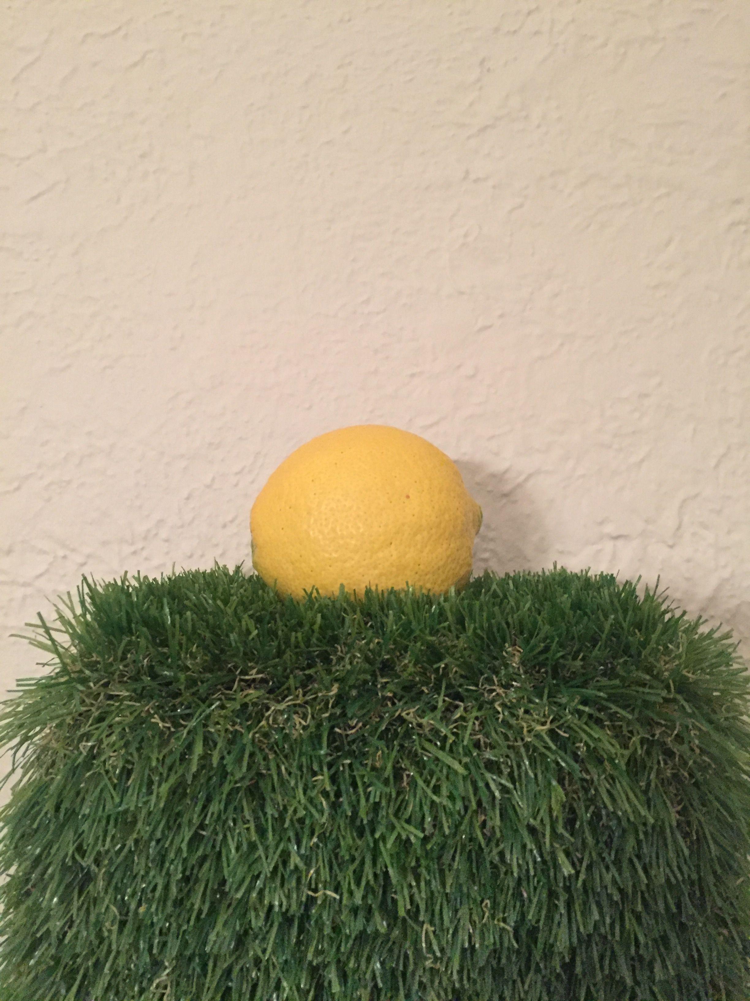 Fruit Star  Home Made Diy Alternative Astroturf Artificial Turf