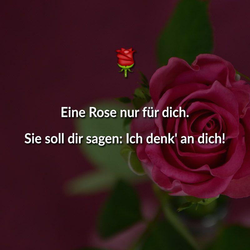 Beliebte valentinstag spr che valentinstagsspr che ich denk an dich liebe und liebe spruch - Coole liebesbilder ...