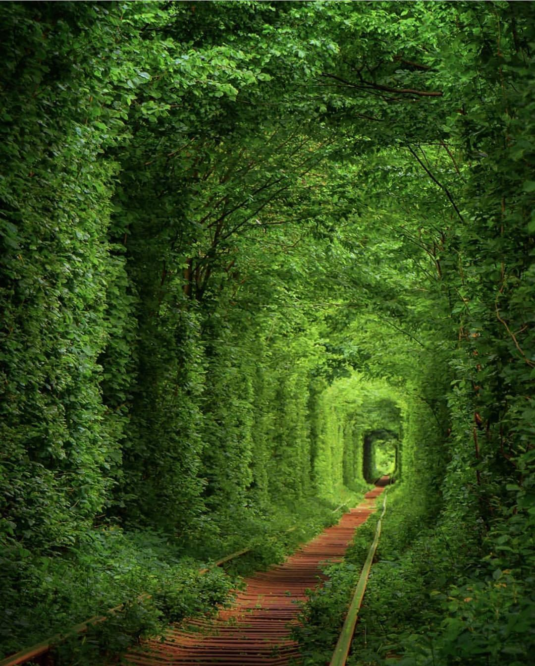 New Destinations Best Areas Best Beaches Best Hotels Best Sights And Best Travel Photography In All With Images Cool Places To Visit Tunnel Of Love Ukraine Tunnel Of Love