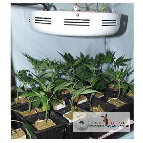 Commercial 90w ufo led plant grow light 3w chip for indoor commercial 90w ufo led plant grow light 3w chip for indoor greenhouse lighting au29900 mozeypictures Gallery