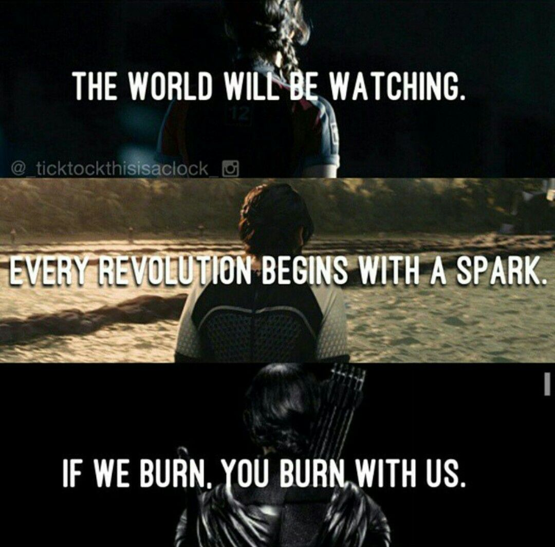 Quotes About Hunger The Hunger Games Quotes  Hunger Games  Pinterest  Hunger Game
