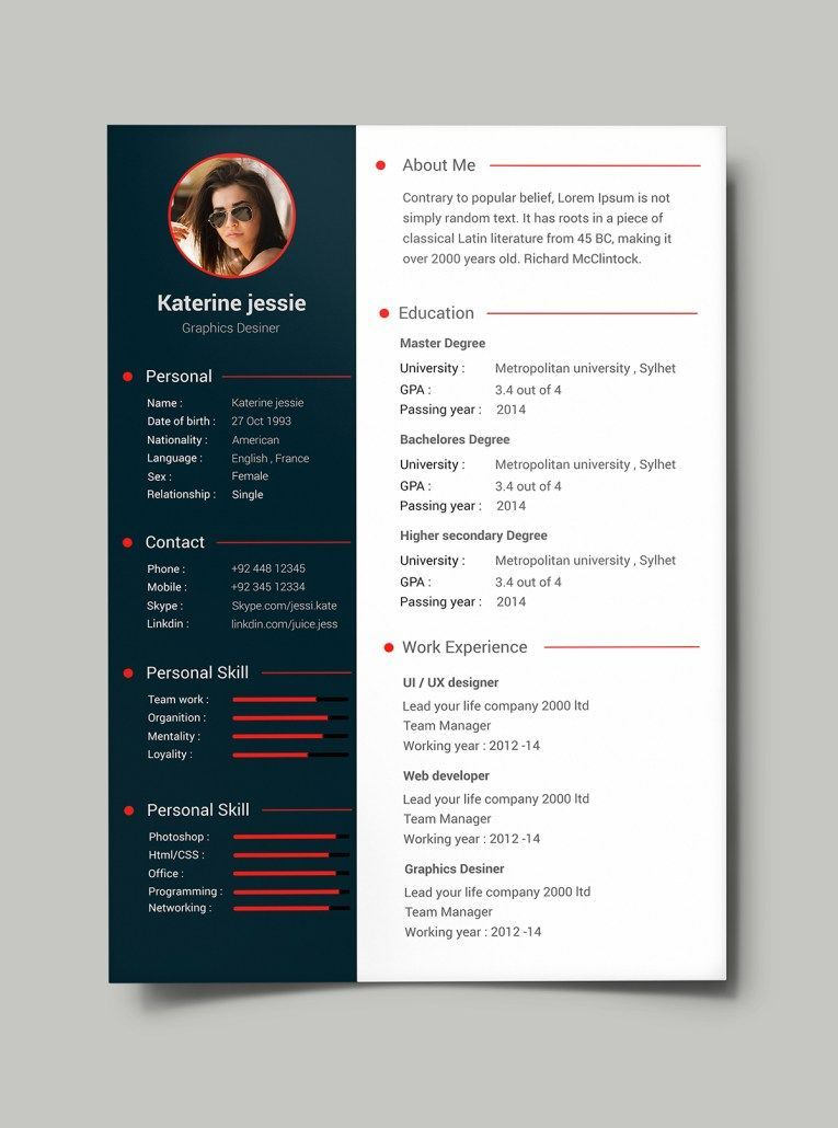Free Professional Resume  CV Template PSD   re  Modl