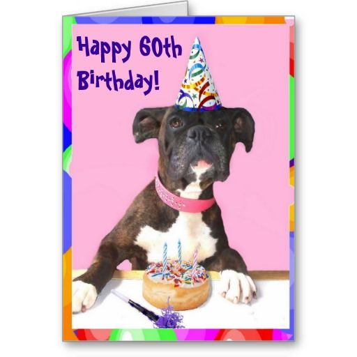 Happy 60th Birthday Boxer Greeting Card You Can Edit The Text To Change Age Or Write A Different Message Boxers Cards Gifts