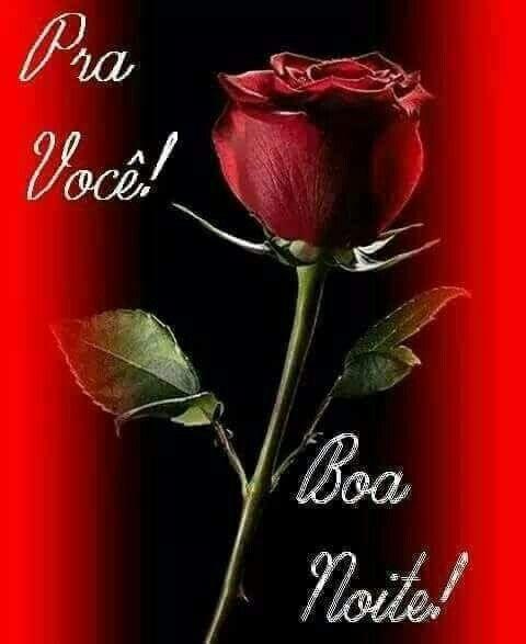 Boa Noite Rosa Frases De Boa Noite Mensagem De Boa Noite