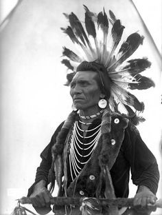 Chief Eagle ~ Salish chief; wore a headdress of highly prized golden eagle feathers, which signify that he was outstanding in battle.