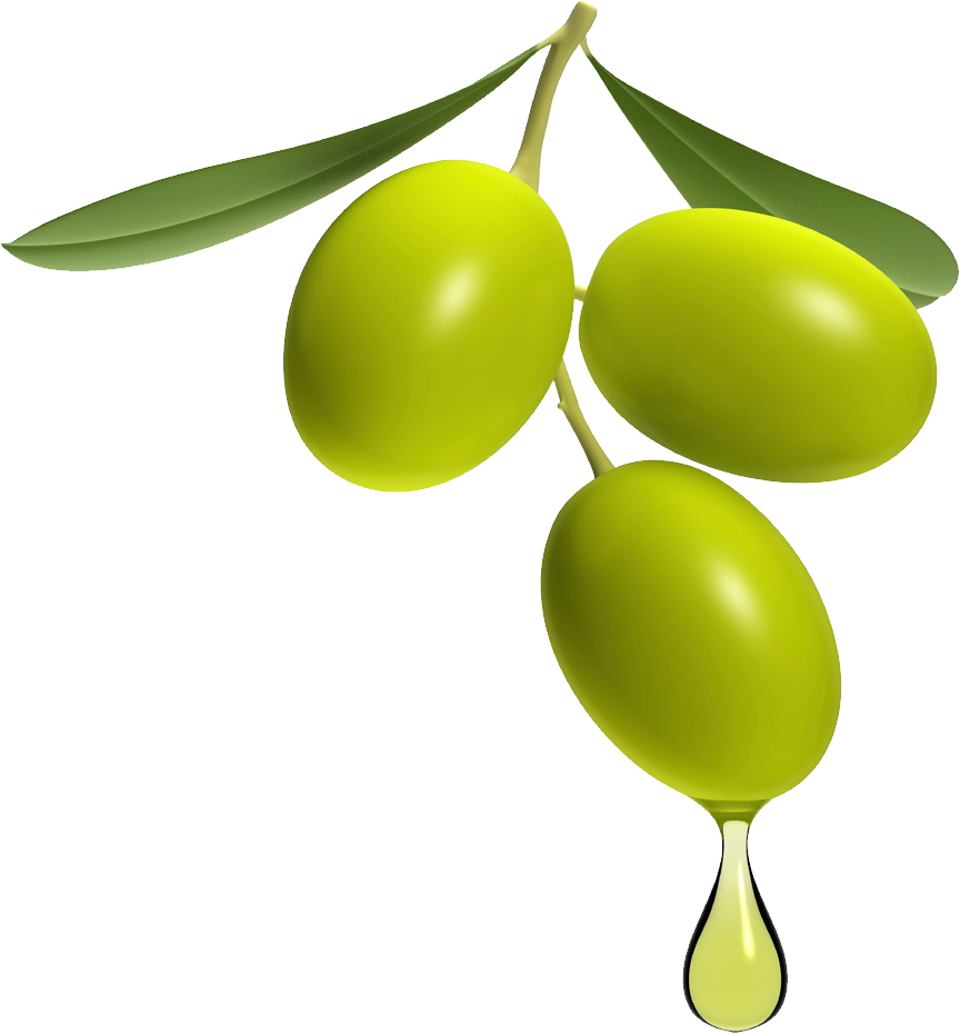 Olives Png Image Olive Png My Secret Garden