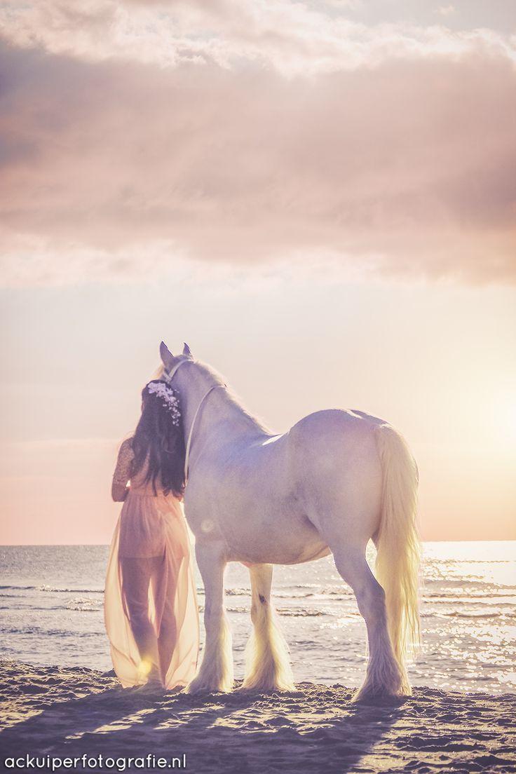 Bildergebnis für Pferd Fantasie Fotoshooting