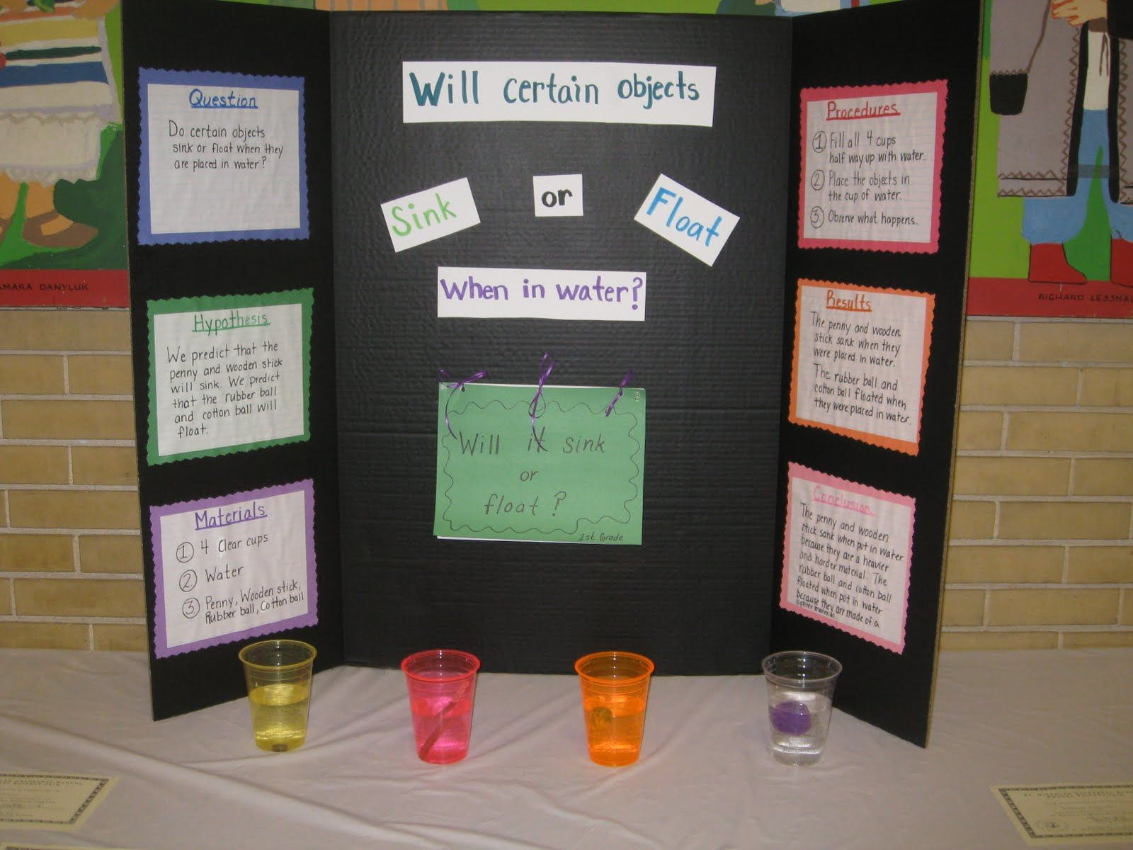 sink or float science fair project | Sink or Float? | Pinterest ...