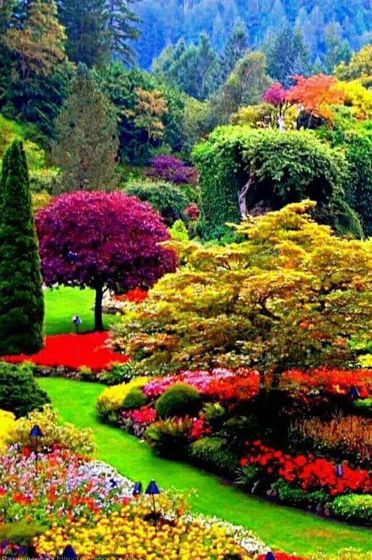 Pin de raquel cimino en paisajes jolie paysage les plus - Paisajes y jardines ...