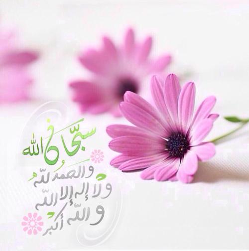 سبحان الله والحمد لله ولا إله إلا الله والله أكبر Islamic Messages Islamic Images Islamic Information