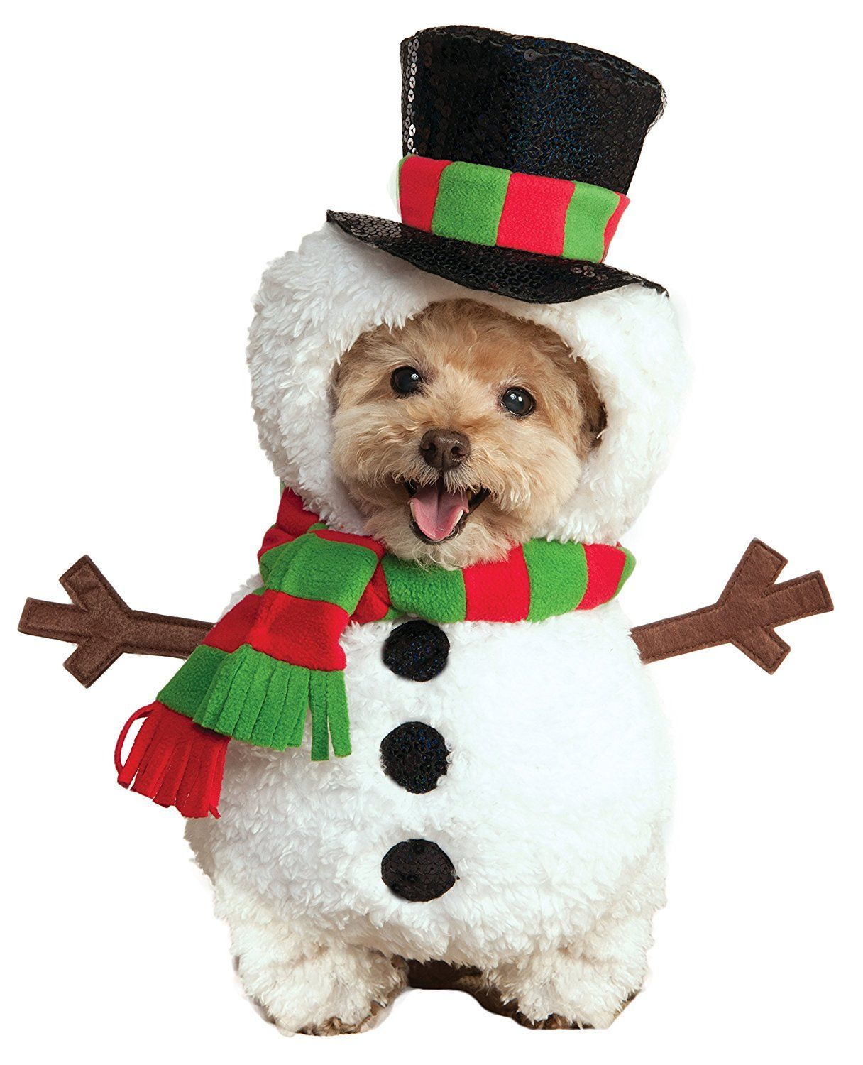 6 Best Christmas Dog Outfits to Get Your Dog in the Holiday