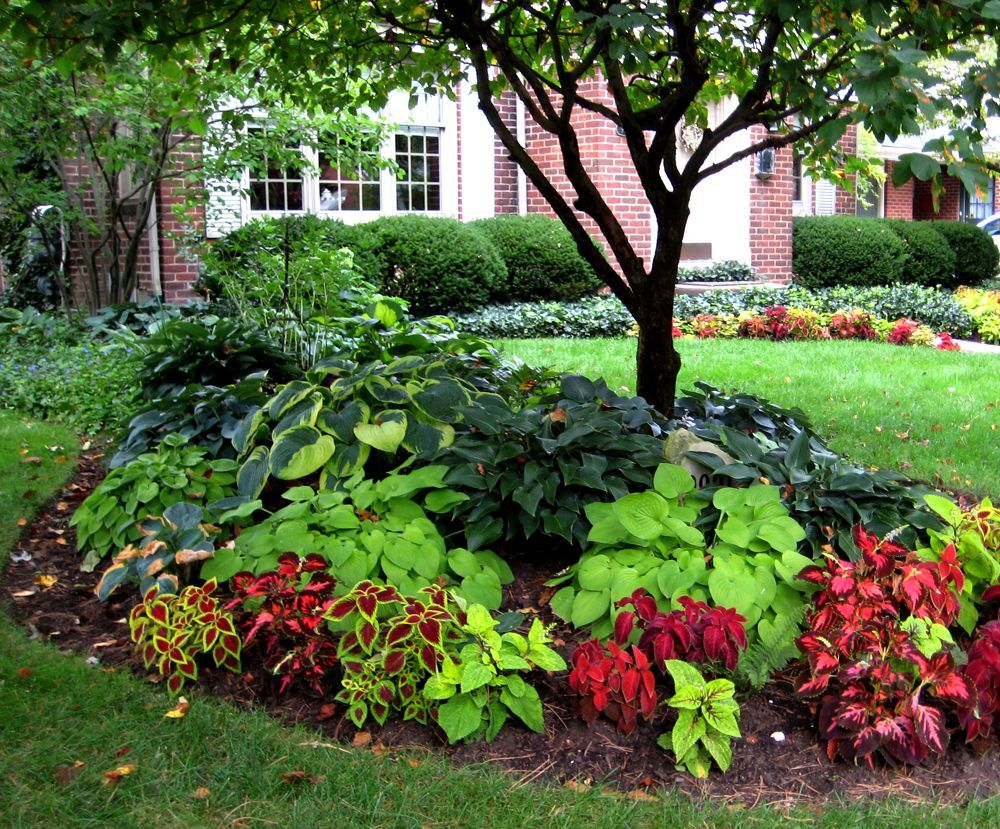 Small yard landscaping ideas shaded area old rosedale for Classic house with flower garden