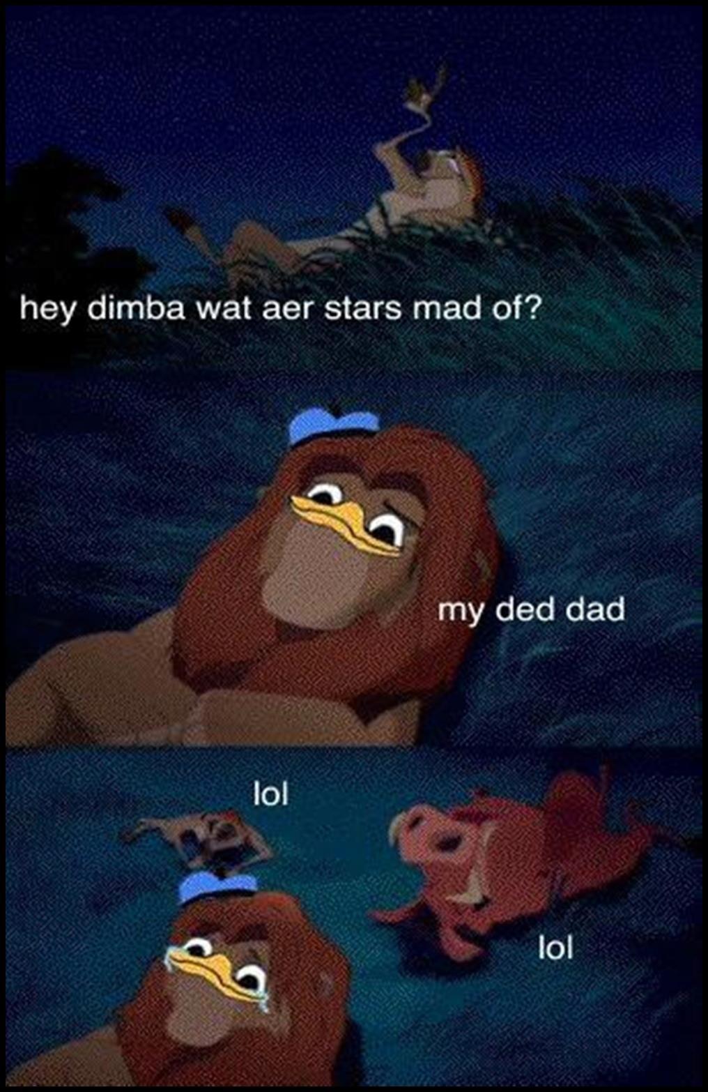 Hey Simba What Are Stars Made Of