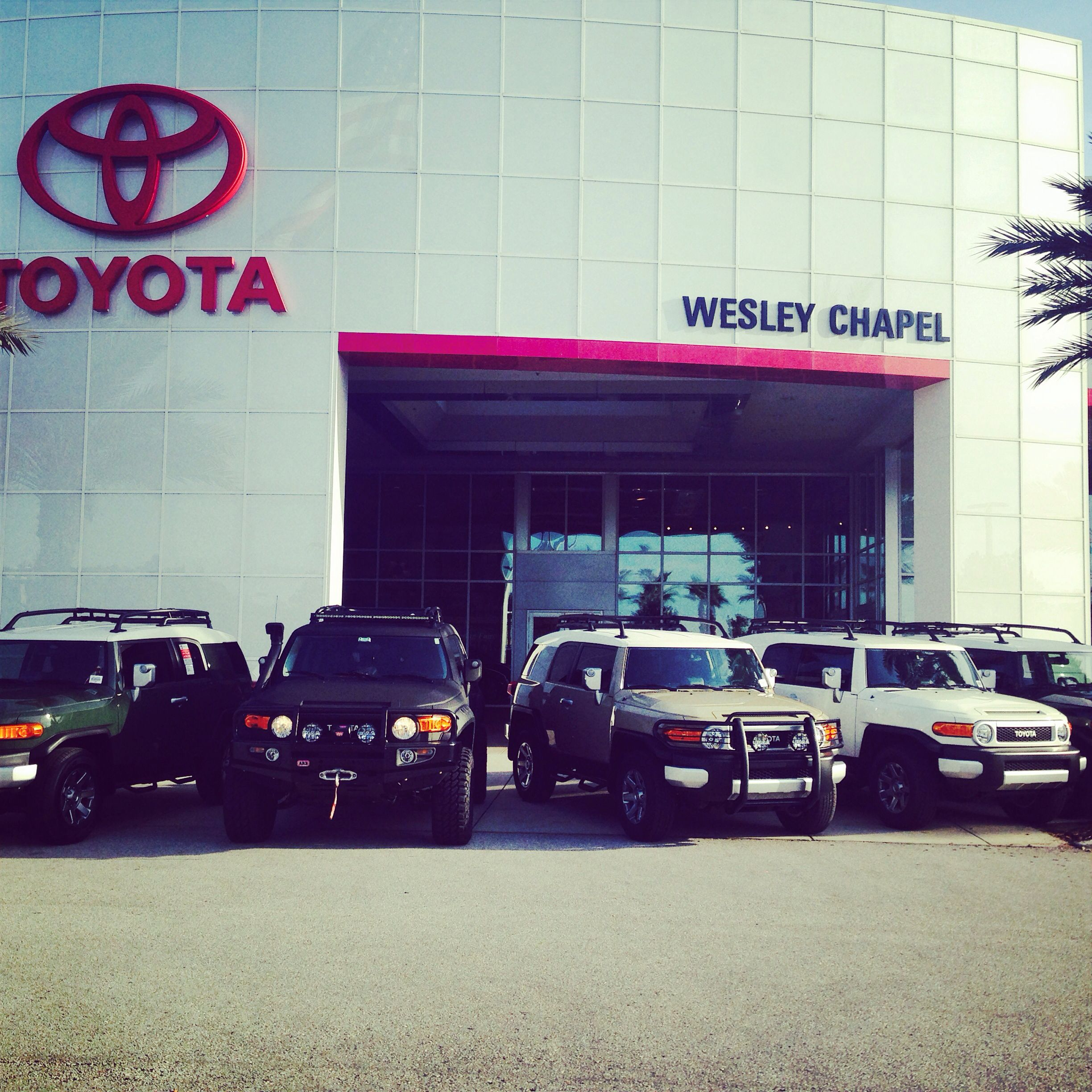 Fj Cruisers Here At Wesley Chapel Toyota