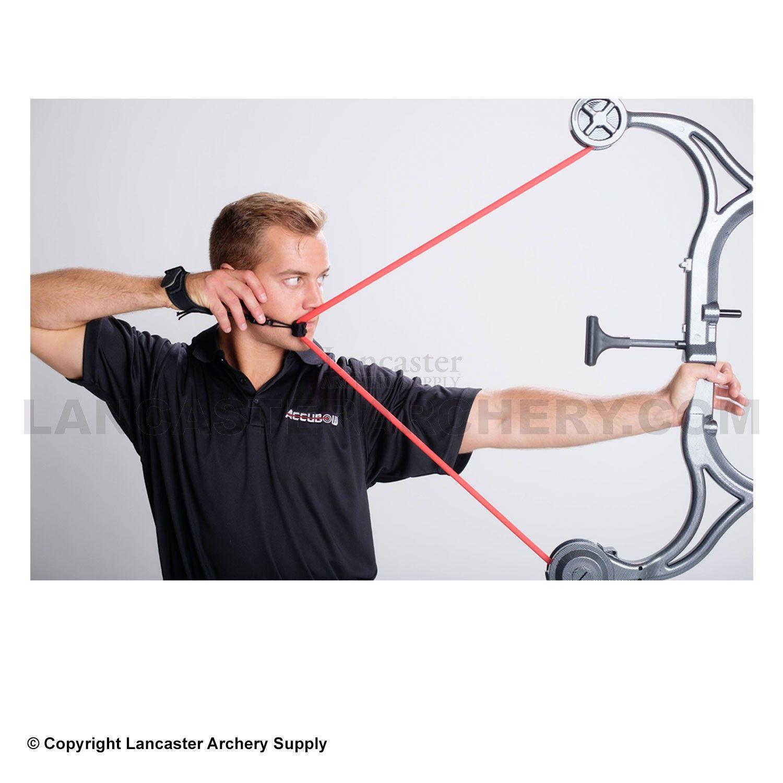AccuBow Archery Training Device | Hunting/Archery/Guns/Knives
