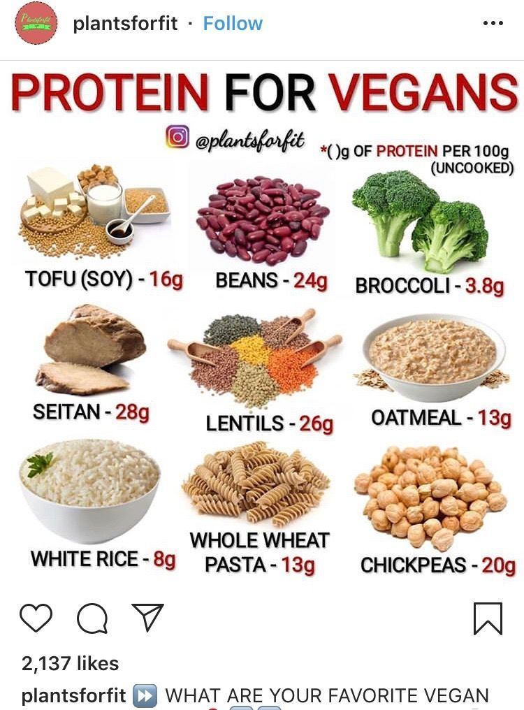 Pin on Vegan Protein Building