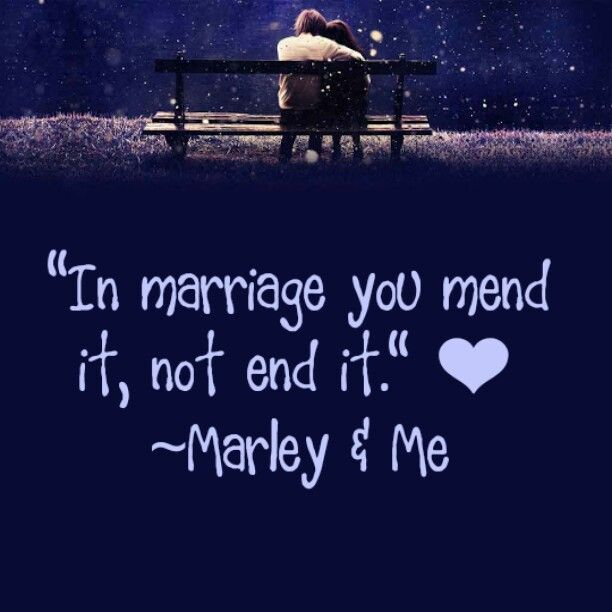 Marley and Me Quotes
