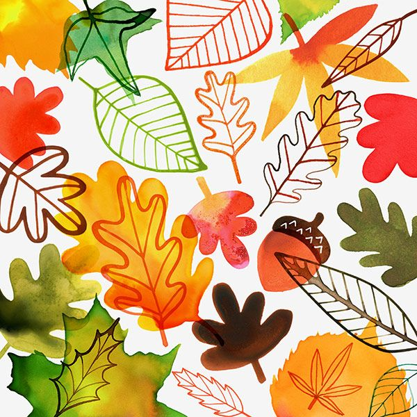 Image result for Fall illustrations