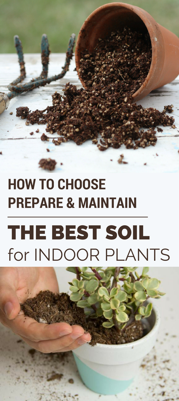 How To Choose Prepare Maintain The Best Soil For Indoor 400 x 300