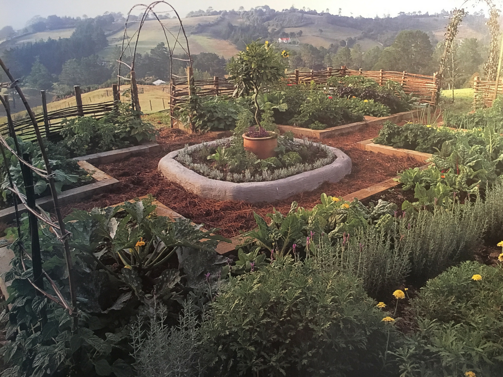 Planning my Potager garden | Garden layout, Potager garden ...