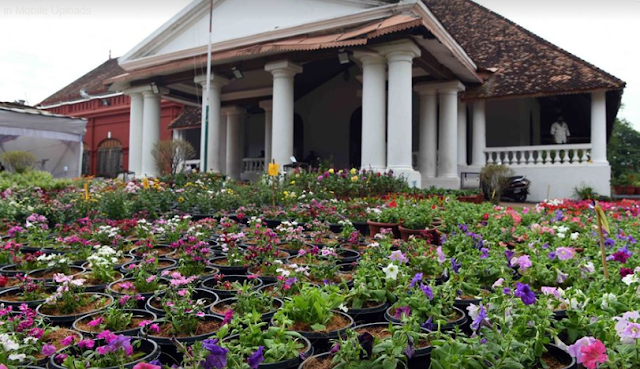 FLORICULTURE Immense opportunities for floriculture in
