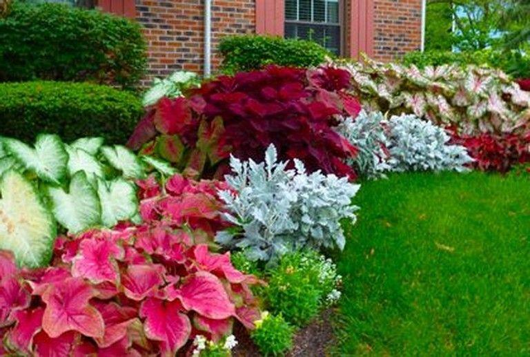 35 Gorgeous And Minimalist Front Yard Landscape Ideas Gardendesign Gardening Gardenideas Shade Garden Design Front Yard Shade Garden