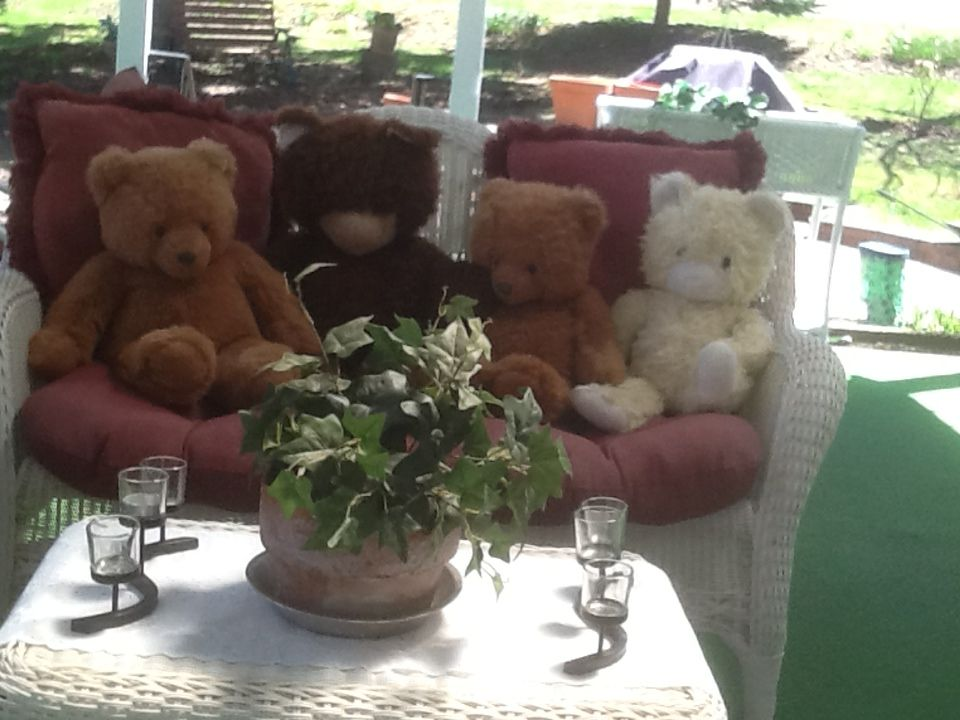 Life is cozy with our friends on the porch teddy bear