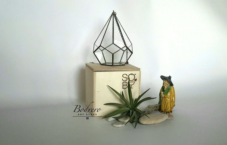 Terrario pensile dodecaedrico di BodreroArtGlass su Etsy