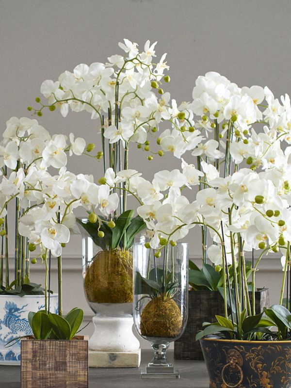There Is A Reason Oka S Phalaenopsis Orchids Are So Popular They Are Realistic Classic Orchid Flower Arrangements Artificial Plants Decor Artificial Orchids
