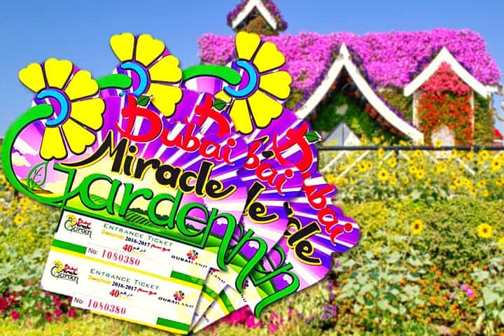 Ticket Prices Of Dubai Miracle Garden Miracle Garden Miracles Dubai