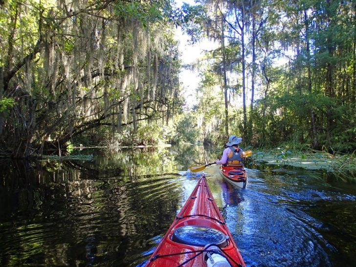 Photo of The Best Places To Go Kayaking In Central Florida