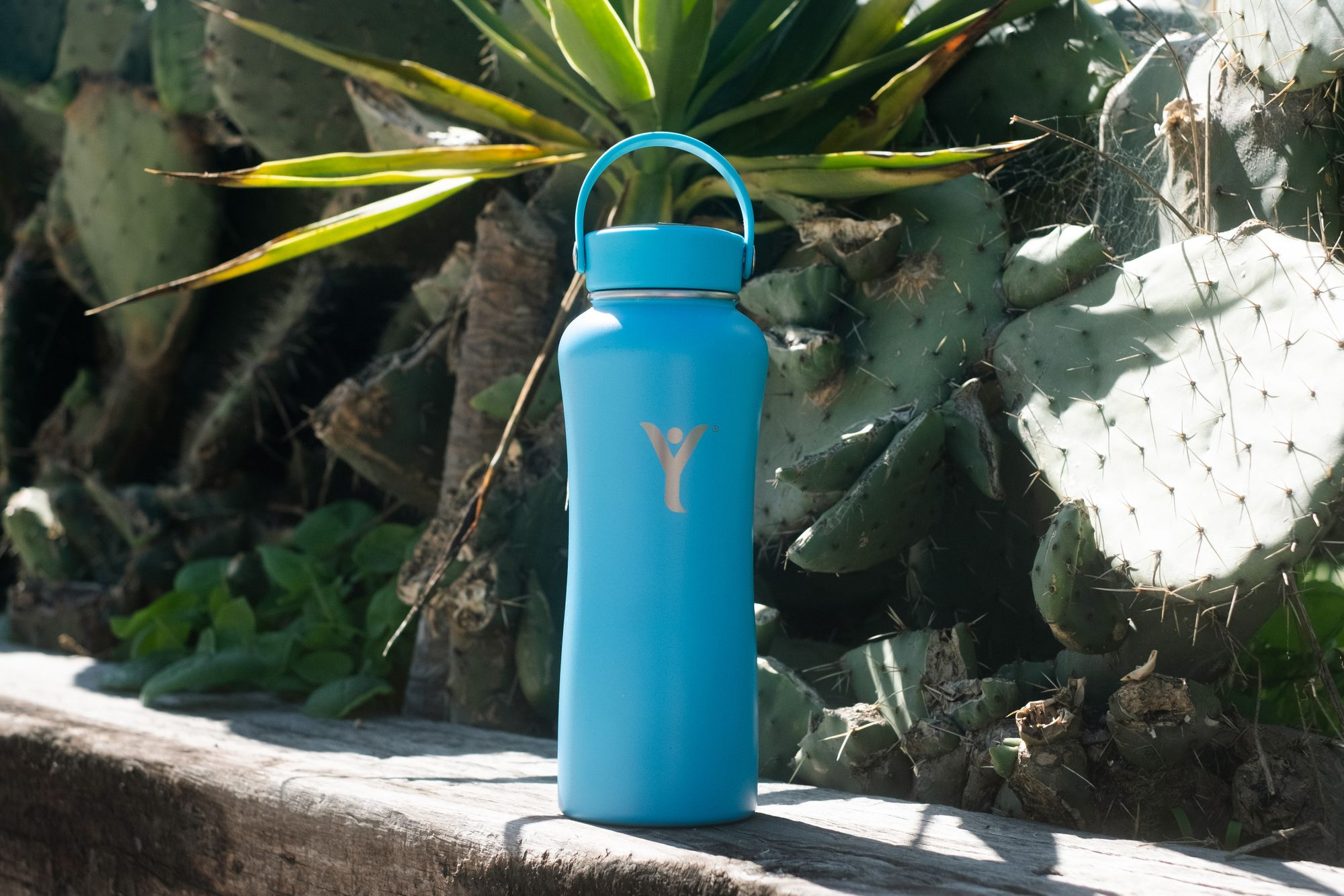 Our DYLN Water Bottles were created to combat the ever-growing problem of plastic waste