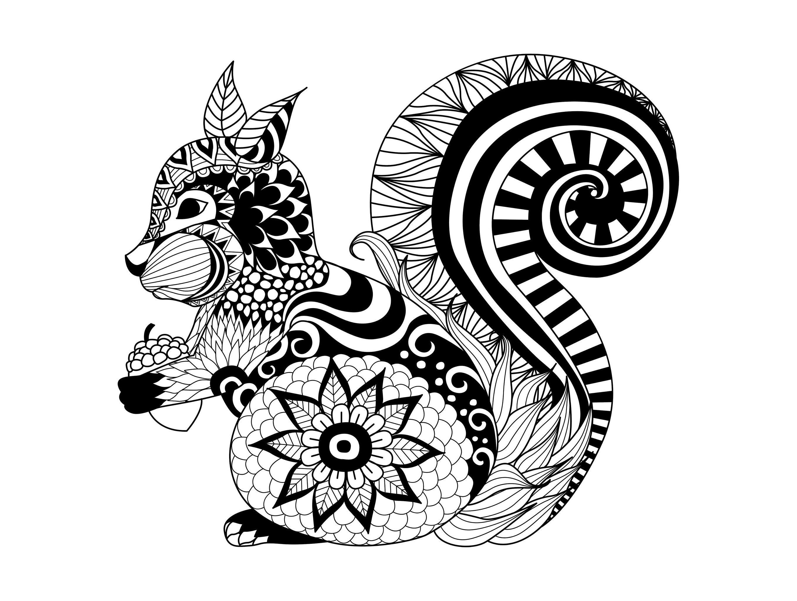 Wolf mandala coloring pages - Free Coloring Page Coloring Adult Zentangle Squirrel By Bimdeedee Cute