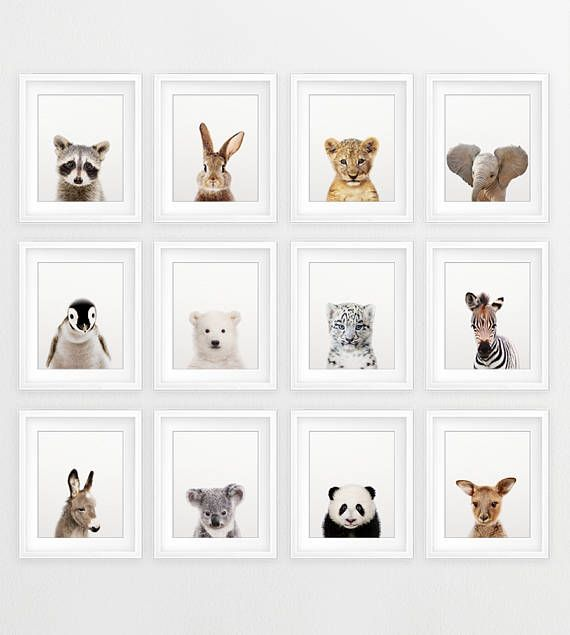 Nursery Animals Prints, Baby Animals Set 12, Nursery Decor, Woodland Animal Print, Safari Animal, Cute Baby Animals, Kids Room Printable Art #kidsrooms