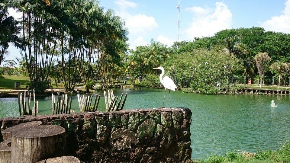 Belém, Pará, Brasil