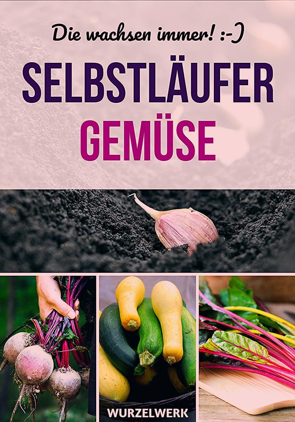 Photo of Gemüsegarten für Anfänger: 9 Gemüse, die jeder hinkriegt – Wurzelwerk