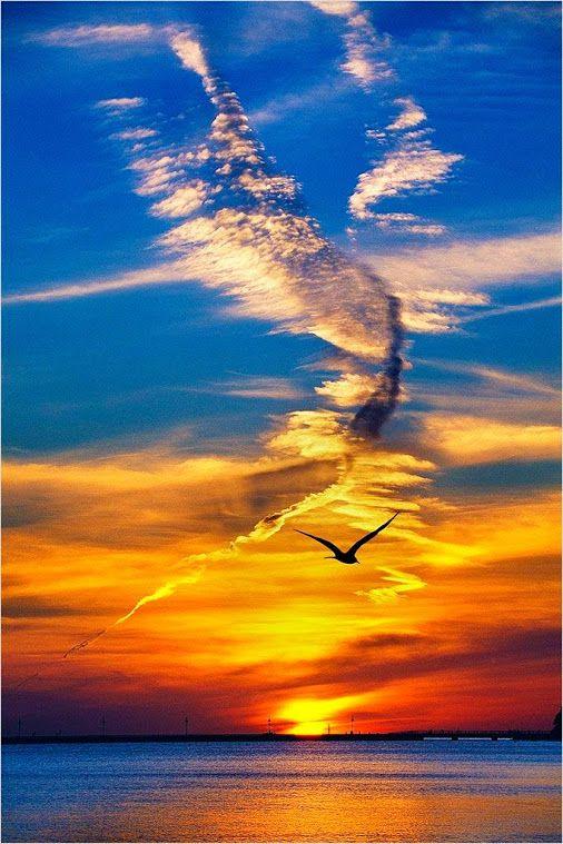 Le Soleil L Ange Et La Lumiere Ainsi Que L Eau Tout En Un Magnifica Paysage Beau Coucher De Soleil Lever De Soleil Et Soleil