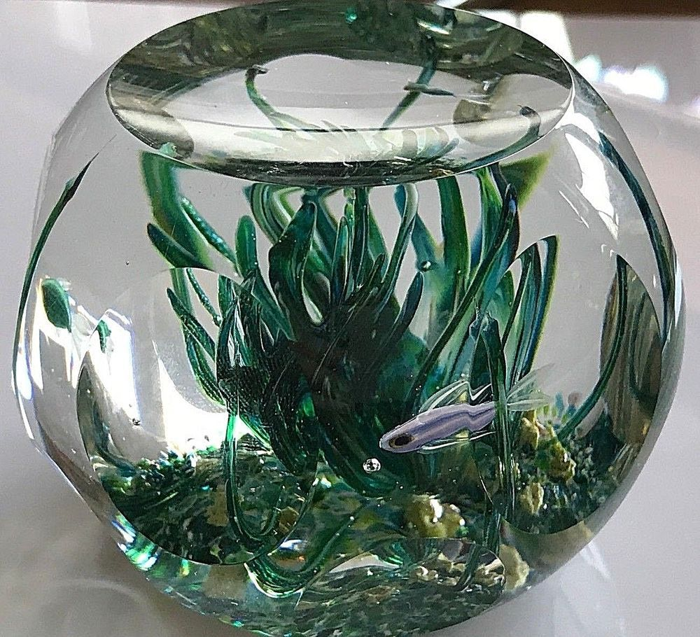Perthshire 1980 Tropical Fish Limited Edition Paperweight