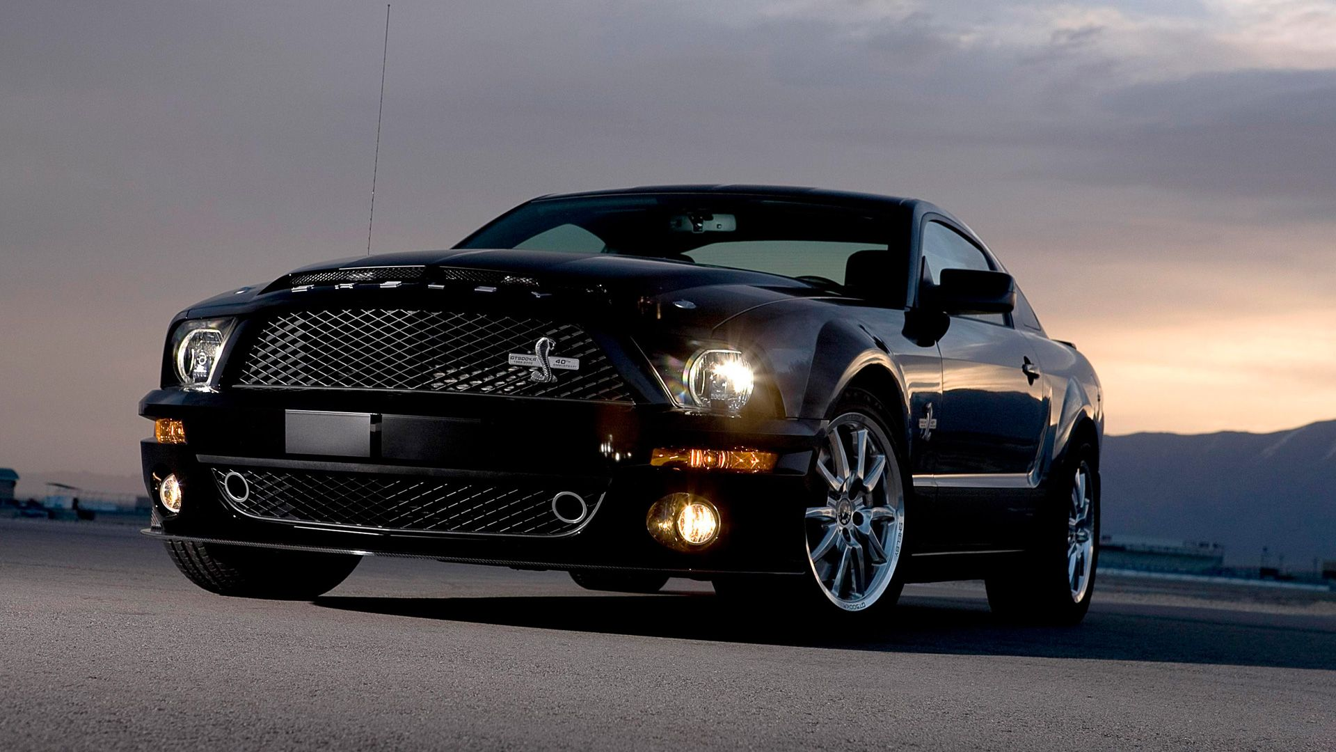 Ford Mustang Shelby Cobra Gt Hd Wallpapers Backgrounds Wallpapers